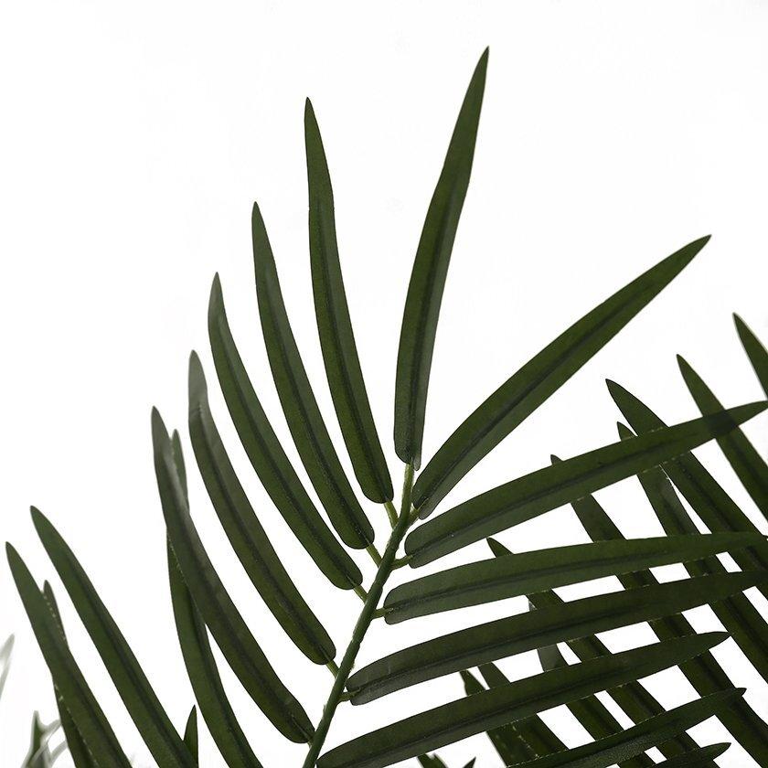 Dekoratif Bitki