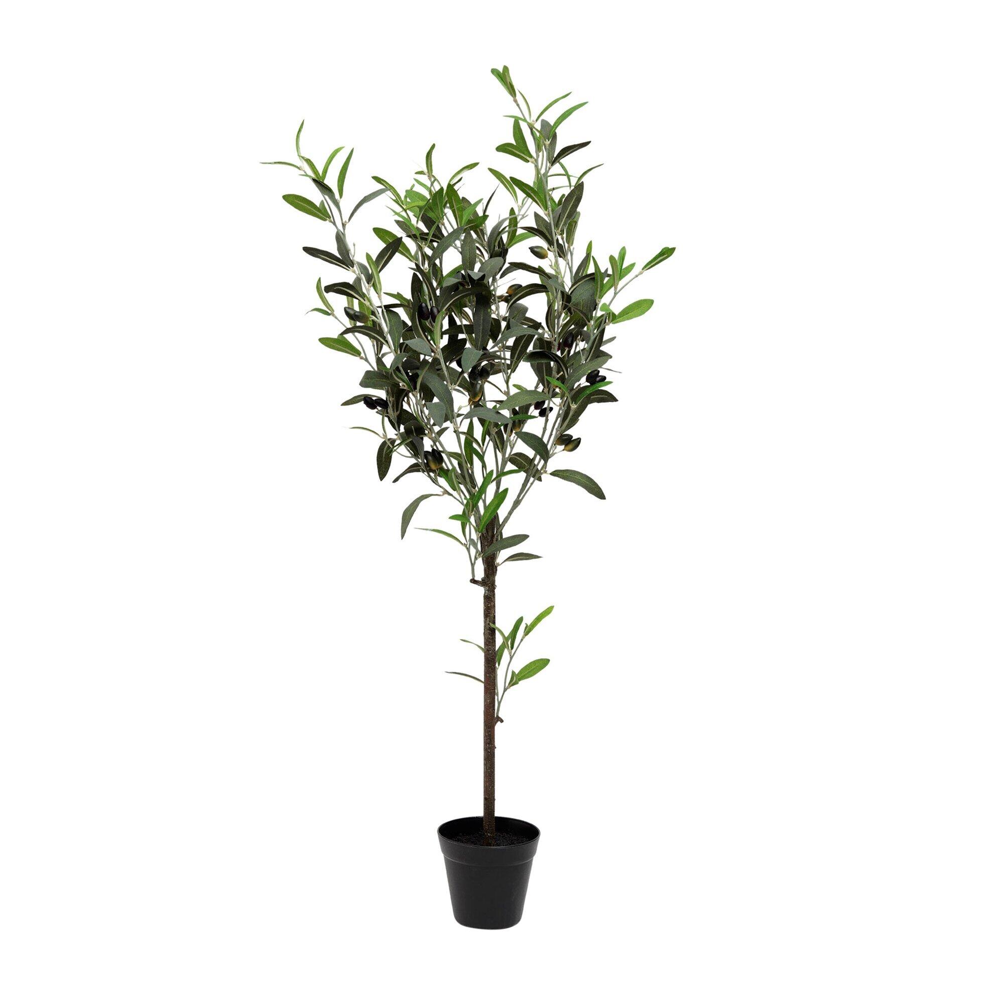 Dekoratif Bitki  - Zeytin Ağacı (57x43x108cm)