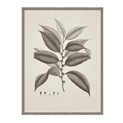 Resim Dekoratif Tablo (43 X 53 Cm )