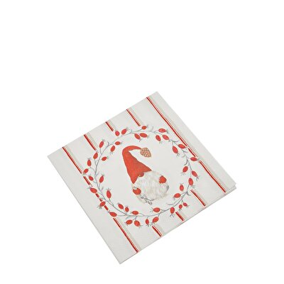 Napkin ( 33 X 33 Cm ) - Package Of 20