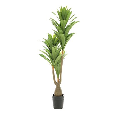 Picture of Artificial Dracaena Tree (  190 Cm  )