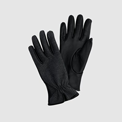 Picture of Glove
