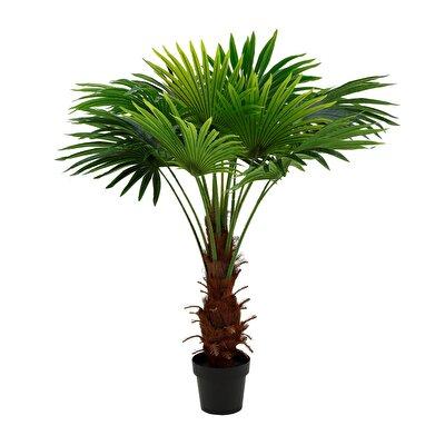 Dekorativer Palmenbaum