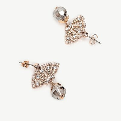 Earrings With Shinny Stones